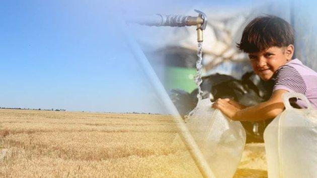 الجفاف يجتاح ديالى والفلاحون يهجرون أراضيهم: أوضاعنا كارثية والحلول معقدة
